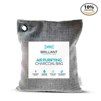 Brilliant Evolution BRRC203 Natural Bamboo Charcoal Air Purifying Bag