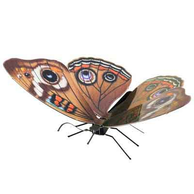 Fascinations Metal Earth Buckeye Butterfly 3D Metal Model Kit