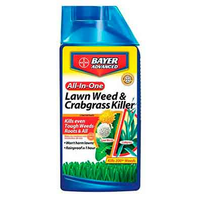 Bayer Advanced 704140 All-in-One Lawn Weed and Crabgrass Killer Concentrate