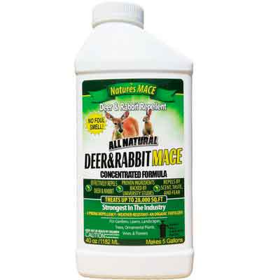 Nature's MACE Deer and Rabbit Repellent 40oz Concentrate