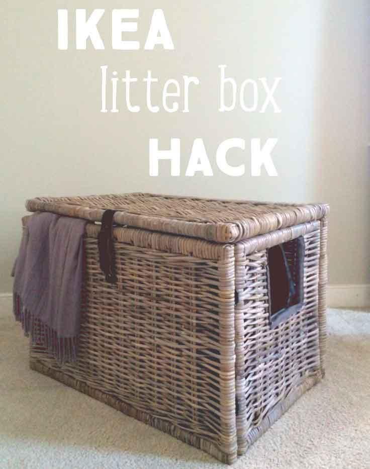 Best Litter Box For Cats [Oct. 2019]